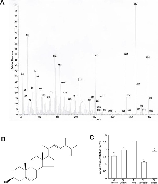 Identification of ergosterol A. The structure and composition of ergosterol analyzed by EI-MS. B. Structure of ergosterol based on the NMR data. C. Measurement of ergosterol concentrations from Ganoderma sinense, Ganoderma lucidum, <t>Amauroderma</t> rude, Coriolus versicolor , and Ganoderma tsugae .