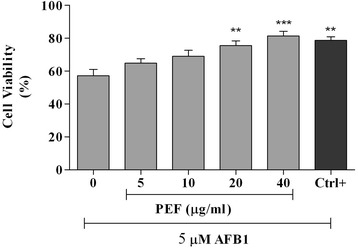 The cytoprotective activity of PEF and gallic acid against AFB1-cell damage. All values are means ± S.E.M of three independent experiments. The cells were pre-treated with different concentrations of PEF and gallic acid as positive control (10 μM or 1.7 μg/ml) for 24 h and then the media were replaced with a medium containing 5 μM of AFB1 and the cells were incubated for another 48 h. The experiment was performed in triplicate. *** p