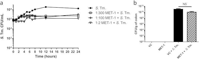 MET-1 inhibited S. typhimurium in vitro but did not inhibit its growth in vivo . ( a ) MET-1 (1:2, 1:100 and 1:300 dilutions) was incubated with S. typhimurium ( S . Tm.), aliquots were withdrawn at times indicated, plated, counted, and plotted as log 10 CFU. MET-1 inhibited the growth of S. Tm. relative to the S . Tm. control, although MET-1 was unable to completely kill S. Tm. even at a high (1:2) concentration. ( b ) Colons were harvested 48 hours after S. Tm. infection, homogenized in sterile PBS, and plated. Infected mice pretreated with MET-1 (MET-1 + S . Tm.) showed no significant reduction of S. Tm. counts in the colon (p > 0.05) compared to mice pretreated with vehicle control (VC + S . Tm.). S. Tm. was not detected in the colon of uninfected mice. Data were analyzed using a 1-way ANOVA with Bonferroni correction. VC = uninfected mice pretreated with vehicle control, n = 18; MET-1 = uninfected mice pretreated with MET-1, n = 18; VC + S . Tm. = S. typhimurium -infected mice pretreated with vehicle control, n = 22; MET-1 + S . Tm. = S. typhimurium -infected mice pretreated with MET-1, n = 21.