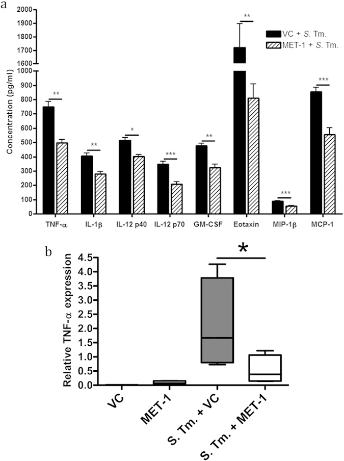 Pro-inflammatory cytokine levels were reduced in S. typhimurium -infected mice pretreated with MET-1. ( a ) Serum cytokine levels were measured 48 hours post-infection using a Bio-Plex Pro mouse cytokine magnetic bead kit. Of the cytokines measured, TNF-α, IL-1β, IL-12p40, IL-12p70, GM-CSF, eotaxin, MIP-1β, and MCP-1 were all significantly reduced in infected mice pretreated with MET-1 (MET-1 + S . Tm.) compared to infected mice pretreated with vehicle control (VC + S . Tm.). There were no significant differences in cytokine concentrations between uninfected mice pretreated with MET-1 or vehicle control (data not shown). Data were analyzed using a 1-way ANOVA with Bonferroni correction, n = 7 for each group (*p