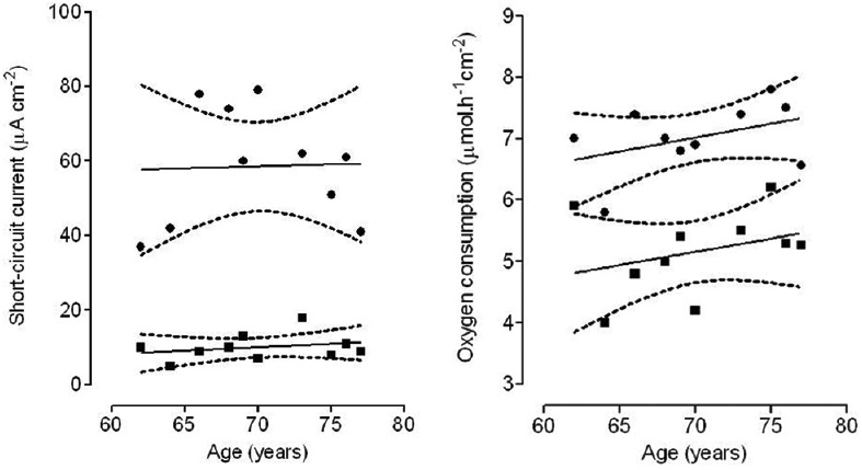 Regression analysis of short-circuit current (μA/cm 2 , upper panel) and oxygen consumption rate (micromol/h/cm 2 , lower panel) versus age under baseline conditions (circles) and after addition of amiloride (squares). The 95% confidence intervals are shown in trace lines. No regression line was significantly different from zero