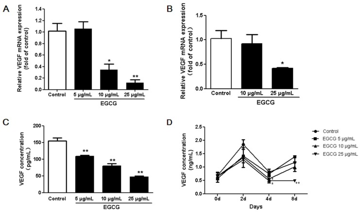 The effects of (−)-Epigallocatechin-3-gallate (EGCG) on vascular endothelial growth factor (VEGF) expression in 3T3-L1 preadipocytes and adipocytes. VEGF mRNA levels of 3T3-L1 preadipocytes ( A ) and adipocytes ( B ) as quantified using <t>7000</t> Real-Time <t>PCR</t> System (Applied Biosystems); ( C ) VEGF concentrations in 3T3-L1 preadipocyte conditioned media which was treated with or without EGCG for 48 h as analyzed by enzyme linked immunosorbent assay (ELISA); ( D ) VEGF concentrations in the conditioned media from 3T3-L1 cells treated with or without EGCG during adipocyte differentiation as measured by ELISA. Data are expressed as a percentage of the control (non-treated cells). Values are expressed as mean ± standard deviation (SD), n = 3. * p