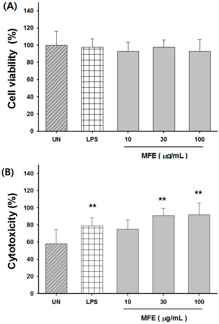 Cytoxicity of MFE in vitro . ( A ) The effect of MFE on the proliferation of CT26 tumor cells; ( B ) The effect of MFE on macrophage-mediated cytotoxicity against CT26 tumor cells. Macrophages were activated by MFE and co-cultured with CT26 tumor cells for additional 24 h at the ratio of 10:1 (macrophage to CT26). The values are presented as mean ± S.D. ** p