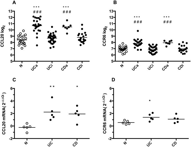 <t>CCL20</t> and CCR6 gene expression in colonic biopsies. A and B: Microarray gene expression results of CCL20 and CCR6 in colonic biopsies from healthy controls (N), active (UCa) or inactive (UCi) ulcerative colitis, and active (CDa) or inactive (CDi) Crohn's disease. Individual values (Log 2 ) and mean are plotted. C and D: <t>qRT-PCR</t> gene expression results of CCL20 and CCR6 in colonic biopsies from N, Ulcerative Colitis (UC) and Crohn's disease (CD), n = 5 in each group. Individual values (foldchange 2 -ΔΔCt ) and mean are plotted. *p