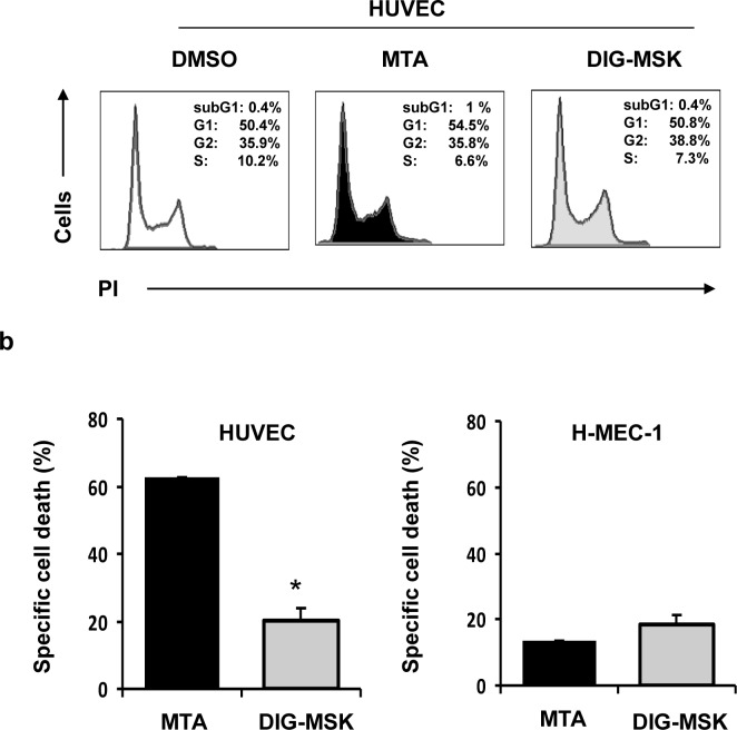 Cell cycle distribution and pro-apoptotic effect on microvascular endothelial cells upon exposure to MTA and DIG-MSK. a) HUVEC and HMEC-1 cells treated with MTA (200 nM) or DIG-MSK (200 nM) or DMSO were stained with propidium iodide (PI) and the cell cycle distribution was analyzed by flow cytometry. A representative cytometric profile of HUVEC cells is shown. b) Cell death was analyzed by flow cytometry in ECs (HUVEC and HMEC-1 cells) treated with 200 nM MTA, DIG-MSK or in untreated cells after staining them with Annexin-V and 7-AAD. The bars represent the mean ± SEM of the specific cell death. At least three independent experiments were analyzed (*p