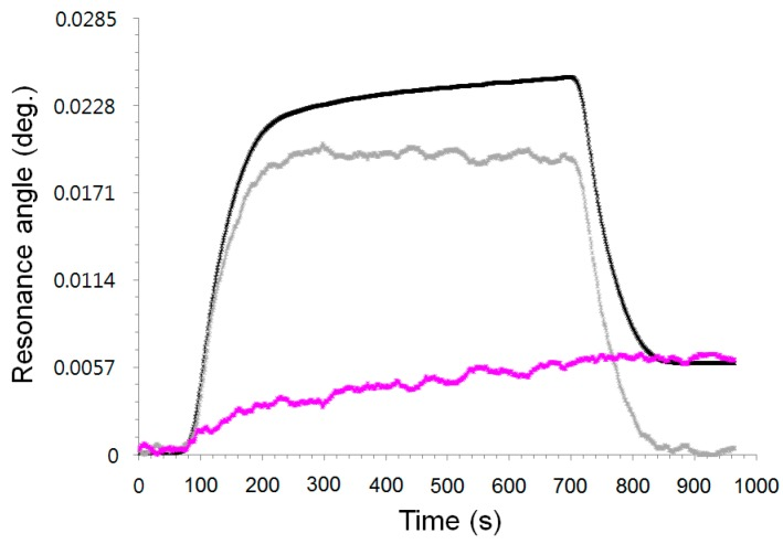 Sensorgrams obtained by measuring θ RA (black solid line), θ CA (gray solid line), and θ SAA (pink solid line) in real time on binding, diluted BSA-glycerin mixture in PBS buffer solution on bare gold sensor chip.