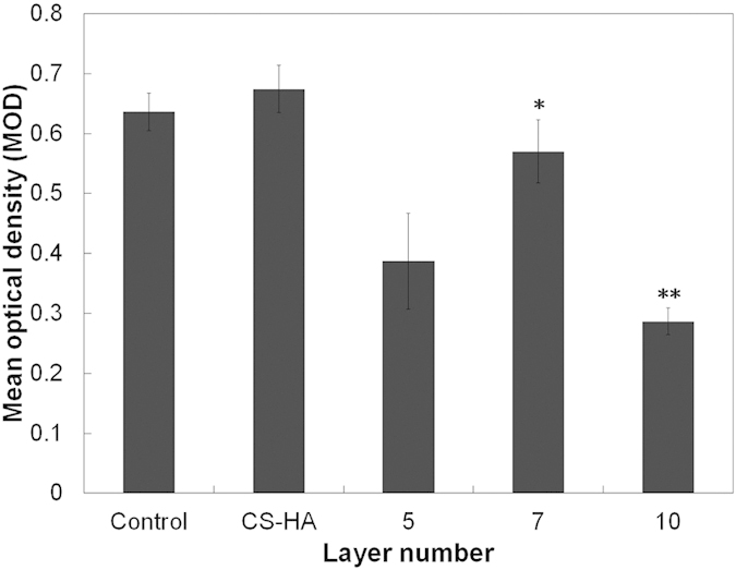 Early biofilm formation (MOD) of S. aureus grown on the titanium plates with and without coating was tested. CS-(HA-AMPCol)7 and CS-(HA-AMPCol)10 exerted a significant inhibitory effect on biofilm formation (p