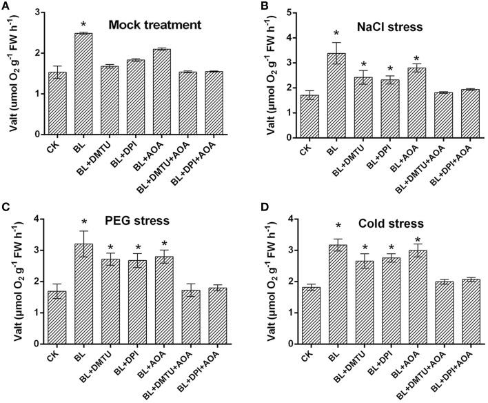 Effects of H 2 O 2 and ethylene inhibitors on BRs-induced AOX capacity in response to environmental stress . (A–D) Plants were pretreated with 100 μM DPI, 5 mM <t>DMTU</t> for 8 h or 1 mM AOA for 12 h, then plants were treated with 1 μM BL 12 h later, plants were challenged with stress conditions for 3 d. Data are the mean ± SD of three biological repeats; the significant difference was analyzed by Student's t -test ( * P