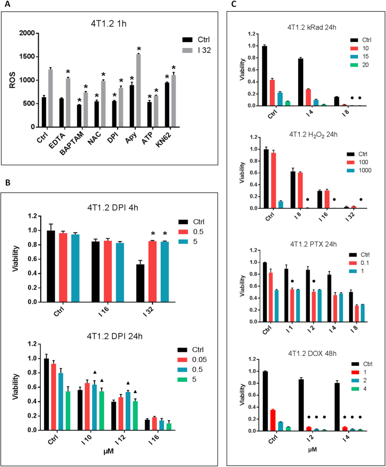 Role of NADPH oxidases-generated ROS. ( A ) Ivermectin-induced ROS are Ca 2+ –, ATP-, and P2X7-regulated. 4T1.2 cells were labeled with a ROS detection probe and treated for 1 h with 32 μM Ivermectin in the presence of 1 mM EDTA, 5 mM NAC, 5 μM DPI, 2500 μunits/ml Apyrase, 3 mM ATP, and 10 μM KN-62. ( B ) Ivermectin-induced cell death is transiently reversed by inhibition of NADPH oxidases with DPI (μM concentrations as indicated). Triangles (▲) indicate significant antagonism CI > 1.0. ( C ) Synergy between Ivermectin and H 2 O 2 - or irradiation-generated ROS, as well as the ROS-inducing chemotherapeutic agents paclitaxel (PTX) and doxorubicin (DOX). 4T1.2 cancer cells were irradiated (10–20 kRad) or treated with H 2 O 2 (10–1000 μM), PTX (0.1–1 μM), or DOX (1–4 μM) and incubated with Ivermectin for 24h/48h. Circles (●) indicate significant synergy CI
