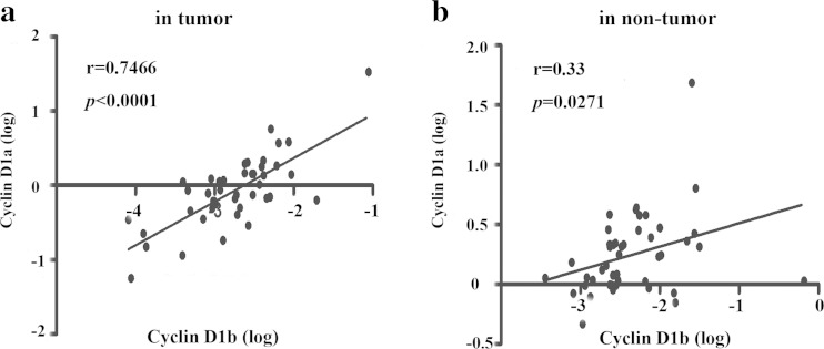 Relationship between cyclin D1a and cyclin D1b expression in HCC tissues. a The correlation of cyclin D1a and cyclin D1b expression level in 45 cases tumor tissues was analyzed by liner correction. b The correlation of cyclin D1a and cyclin D1b expression level in nontumor tissues was analyzed as in ( a )