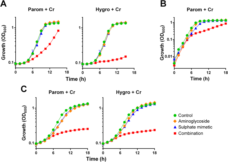 Synergistic growth inhibition of fungi pathogenic to humans. ( A ) Growth of C. albicans in YEPD broth supplemented with 200 μg ml −1 paromomycin, 10 μg ml −1 hygromycin B and/or 25 μM chromate. ( B ) Growth of C. glabrata in YEPD broth supplemented with 400 μg ml −1 paromomycin and/or 50 μM chromate. ( C ) Growth of Cryptococcus neoformans in YEPD broth supplemented with 12.5 μg ml −1 paromomycin, 0.625 μg ml −1 hygromycin B and/or 12.5 μM chromate. Data shown are replicates from two independent cultures ± SEM where these are larger than the symbol dimensions. The data for each condition are representative of at least two independent experiments performed on different days.