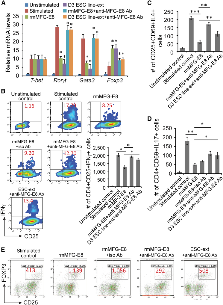 MFG-E8 in ESCs Suppresses Th1, Th2, and Th17 Subsets while Enhancing the Treg Subpopulation (A) Gene expression of transcriptional factors representing Th1, Th2, and Th17 (qPCR). Purified CD3 + splenic T cells were primed with anti-CD3/CD28 for 3 days and then treated with either D3 ESC-derived soluble factors (D3 ESC-ext, D3 ESC line derived from 129S2/SvPas mouse blastocysts) or rmMFG-E8 in the presence of absence of MFG-E8 blocking antibody, followed by PMA stimulation. Expression levels of mRNA of transcriptional factors ( T-bet , Rorγt , Gata3 , and Foxp3 ) were determined by qPCR. Data represent mean ± SD of at least three independent experiments; ∗ p