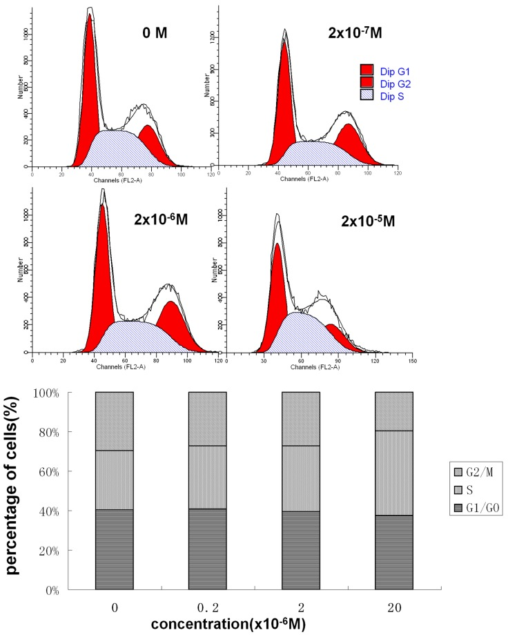 Effect of DES on GC-2 cell cycle progression. GC-2 cells were treated with the indicated concentrations of DES for 48 h. Cell cycle distribution was assessed by the propidium iodide method using flow cytometry.