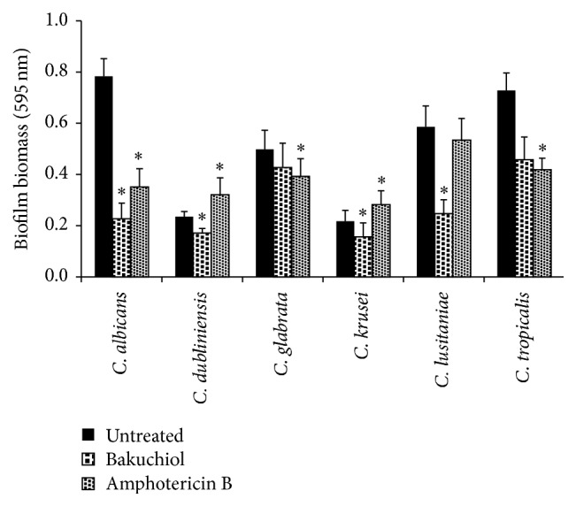 Absorbance values of crystal violet solutions obtained from Candida biofilm formation following bakuchiol exposure. Data were represented as mean ± SD of three independent experiments performed in triplicate. Amphotericin B used as a positive control. Asterisk ( ∗ ) denotes the significant difference between treated samples and the untreated ones (one-way ANOVA, ∗ P
