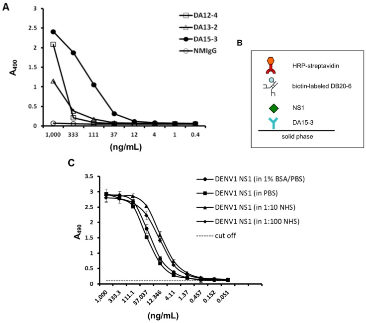 Development of an ELISA-based diagnostic platform for DENV1. ( A ) Direct ELISA was used to compare a panel of mAbs against serial dilutions of immunoaffinity-purified DENV1 NS1 protein. The ELISA plate was coated with a three-fold dilution of purified DENV1 NS1 protein. After washing, the coated NS1 protein was detected with the indicated mAb at a concentration of 1 μg/mL. Normal mouse IgG (NM-IgG) was used as the negative control; ( B ) Schematic describing the diagnostic platform; ( C ) Standard curve of DENV1 NS1 in different buffer systems. DENV1 NS1-specific mAb, DA15-3, was used to coat an ELISA plate at a concentration of 50 μg/mL. Immunoaffinity-purified DENV1 NS1 protein was diluted three-fold in different buffers and incubated with the capture mAb. NS1 protein was detected through the scheme shown in panel ( B ). Data points represent the mean ± standard deviation for three replicates. The dashed line represents the cut off value. NHS: normal human serum.
