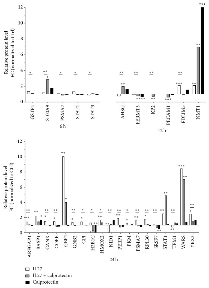 Label-free quantified proteins represented as relative protein levels. The calprotectin significant modulatory effects on mutual proteins in HUVECs stimulated with <t>IL27</t> (30 ng/mL) ± calprotectin (1 μ g/mL) are shown for 6, 12, and 24 h ( n = 9). Significance is indicated by q -value: ∗ q