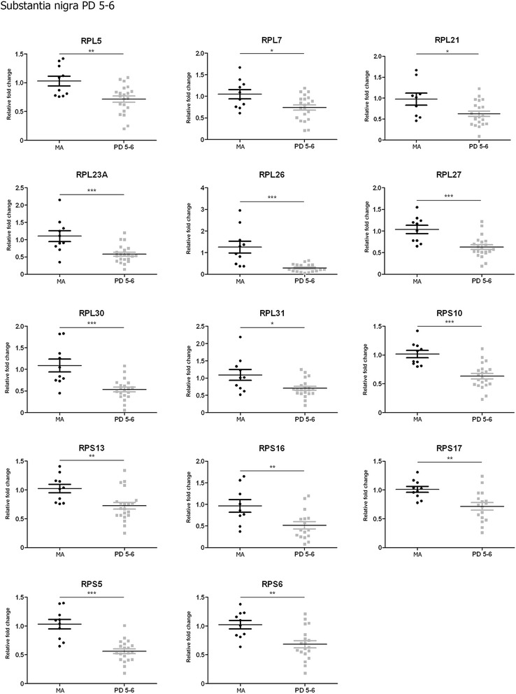 Altered mRNA expression levels of 16 ribosomal proteins in the frontal cortex area 8 in middle-aged (MA) and PD cases determined by TaqMan PCR assays using GUS-β for normalization. Student's t test * p