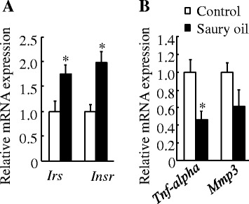 Gene expressions in adipose tissue of diet-induced obese C57BL/6J mice fed the control or saury oil diet for 18weeks. mRNAs transcribed from insulin signaling–related genes ( a ) and pro-inflammatory genes ( b ) in epididymal adipose tissue at the end of 18weeks. Values are means±SEM,  n =10. * P