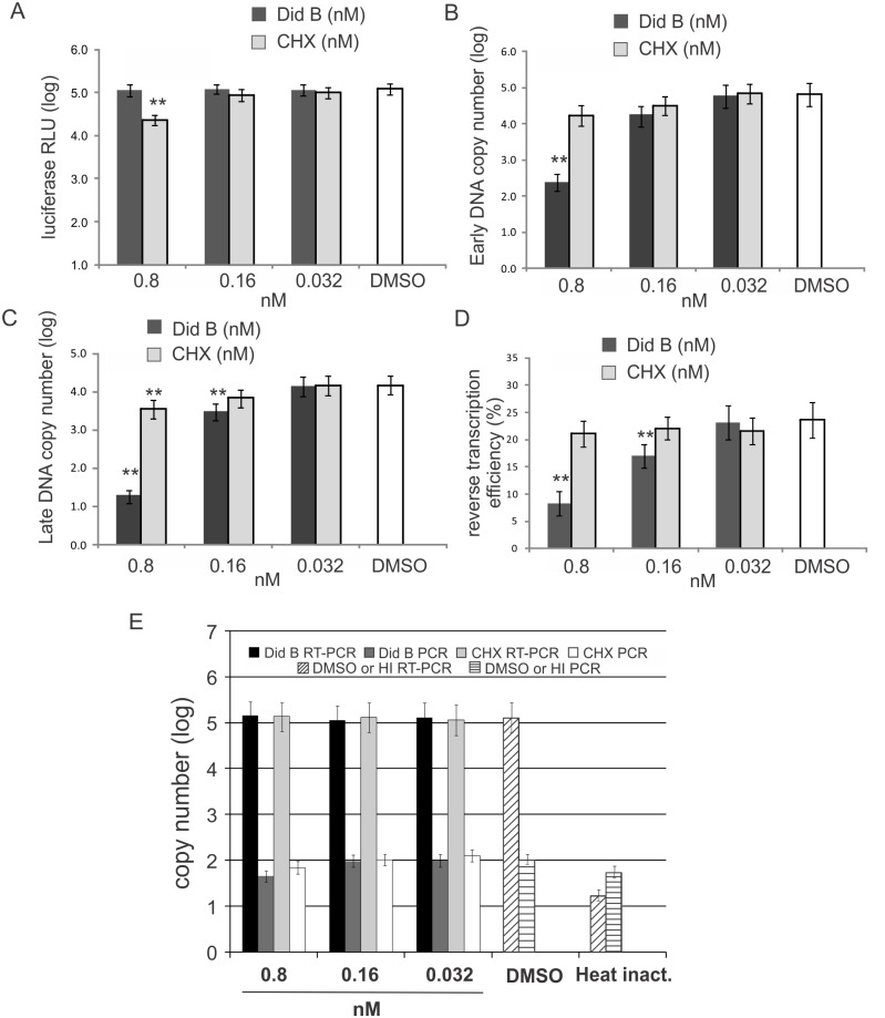 The eEF1A inhibitor didemnin B blocks HIV-1 reverse transcription. ( A ) Jurkat cells transfected with pCMV-Gluc 2 were treated post-transfection with media containing didemnin B (Did B) or cycloheximide (CHX) at concentrations as indicated. The levels of secreted Gaussia luciferase in the culture supernatants were measured 8 h post-treatment. ( B and C ) Jurkat cells were incubated with subnanomolar concentrations of Did B and CHX as indicated and then infected with HIV-1 at 4°C for 2 h and 37°C for 4 h. The total cytoplasmic DNA was collected and the levels of HIV-1 early ( B ) and late ( C ) reverse transcription products were measured by qPCR. ( D ) Reverse transcription efficiencies were calculated as the ratio of late to early viral DNA, expressed as a percentage. ( E ) The levels of HIV-1 RNA in cells treated with didemnin B (Did B) and cycloheximide (CHX). Jurkat cells were incubated with 100 nM nevirapine and concentrations of Did B and CHX as indicated at 37°C for 2 h followed by HIV-1 infection. The HIV-1 was incubated with cells at 4°C for 2 h and then at 37°C for 4 h. Heat inactivated virus was used as a negative control. The HIV-1 RNA was extracted from the cells and detected by RT-qPCR. A direct qPCR without RT from the RNA samples was performed to monitor for DNA contamination. All columns represent a mean value and standard deviation from at least three independent experiments. ** = p