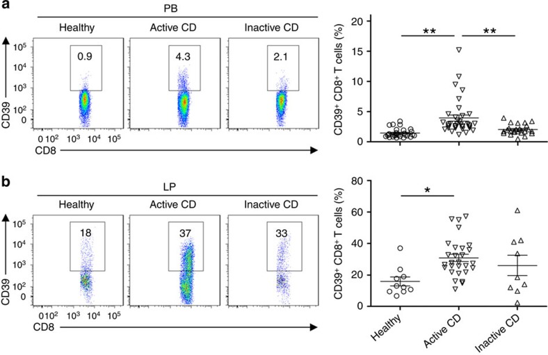 CD39 + CD8 + T cell numbers are increased in Crohn's disease (CD). ( a , b ) Flow cytometric analyses of CD39 expression on CD8 + T cells in peripheral blood (PB) ( a ) or lamina propria (LP) ( b ) of healthy volunteers, patients with active and inactive CD ( n =29, 35 or 25 for peripheral blood; 10, 28 or 9 for lamina propria, respectively). Numbers in quadrants indicate percentage of the cells in the designated gates. Data are presented as means±s.e.m., * P