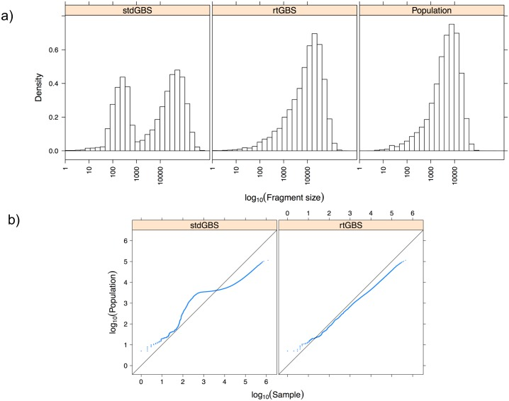 Fragment size distribution analysis. A) Semi-logarithmic display of the BamH I fragment size distribution among the 'Hongyang' genome (population) and the two library methods. B) Probability distribution plots for the two GBS library methods vs. Hongyang genome RE fragment size distribution.