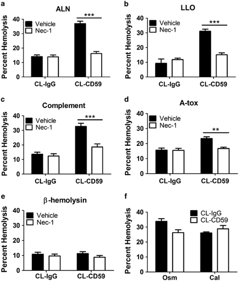 RBC necroptosis induced by hCD59 depends on membrane pore size and nature. When combined with the hCD59-independent cholesterol-dependent cytolysins (CDCs) ( a ) arcanolysin (ALN) or ( b ) listeriolysin O (LLO) or ( c ) the MAC of complement, hCD59 crosslinking (CL-CD59) induces robust RBC necroptosis as indicated by inhibition of RBC death with nec-1 (50 μ M). ALN, LLO, and the MAC all form protein-based pores ≥10 nm in diameter. ( d ) When combined with the hCD59-independent A-tox, which forms protein-based pores of 1–2 nm in diameter, induction of RBC necroptosis by hCD59 is weak. ( e ) When combined with β -hemolysin, which forms polyene-based pores, hCD59 crosslinking fails to induce RBC necroptosis. All PFTs were used at 0.2 HU. ( f ) hCD59 crosslinking does not induce RBC necroptosis when combined with two forms of eryptosis damage, hyperosmotic stress (osm) and excess calcium (cal). All hemolysis assays except for eryptosis were completed at a time point of 30 min. Eryptosis stimuli were added to RBCs over a period of 24 h. When Nec-1 was used, RBCs were treated for 1 h before the addition of stimuli. CL-IgG=crosslinked irrelevant IgG control. Error bars in hemolysis assays represent stand ard deviation. All hemolysis assays are the results of three independent experiments. Two-way ANOVA with Bonferroni posttest, *** P