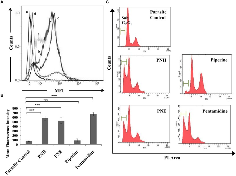 Study of apoptotic correlates post-treatment with bioactive fractions. (A) DNA fragmentation in treated <t>promastigotes</t> illustrated by TUNEL assay. The promastigotes (2 × 10 6 ml -1 ) were treated with bioactive fractions and compounds (500 μg ml -1 ) for 72 h at 22°C after which the cells were processed according to manufacturer's instructions and acquired on BD <t>LSR</t> II flowcytometer. Histograms depict shift in MFI of (b) PNH, (c) PNE, (d) piperine, and (e) pentamidine with respect to (a) parasite control. (B) Bar graph representing the specific MFI values indicative of TUNEL positivity in PNH, PNE and pentamidine treated samples. ∗∗∗ P