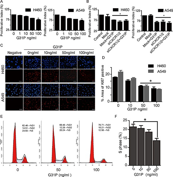 <t>CXCR1/2</t> antagonism by G31P inhibits NSCLC cell proliferation A. cells were treated with G31P (at concentrations of 0, 1, 10, 50, and 100 ng/ml) for 48 h. Cell proliferation was measured by CCK8 assay at 450 nm. G31P at 100 ng/ml showed significant inhibition of growth, (*, p