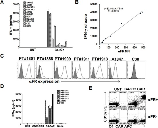 C4 CAR T cells secrete Th1 proinflammatory cytokine in response to tumor cell line and primary ovarian cancer cell surface associated αFR A. C4-27z CAR but not UNT T cells (10 5 cells/well) secret IFN-γ following overnight incubation with ovarian and breast cancer cell lines (10 5 cells/well) expressing different levels of surface αFR. Mean IFN-γ concentration ± SEM (pg/ml) from triplicate cultures is shown. B. Correlation between αFR expression (mean fluorescence intensity; MFI) on tumor cells and the production of IFN-γ by C4-27z CAR T cells cocultured with these tumor cells was plotted. C. Three primary ovarian cancer solid tumor samples (PT#1909, 1911, and 1913) and two ascites samples (PT#1801 and 1888) gated on CD45- EpCAM+ cells were stained with anti-αFR antibody (open histogram) or matched isotype controls (filled gray histogram) and analyzed by flow cytometry. A1847 and C30 cell lines served as αFR positive and negative expression controls, respectively. D. C4-27z CAR-modified T cells secrete IFN-γ during overnight culture with CD45-depleted αFR-expressing primary human ovarian cancer samples and αFR pos control cell line A1847, but not αFR neg C30 ovarian cancer cells. E. Antigen-specific T-cell induction of surface CD137 (4-1BB) expression was measured by FACS detection on C4-27z CAR T cells when stimulated overnight with αFR+ tumor cells (SKOV3, A1847 or T47D) but not αFR neg cells. UNT T cells did not upregulate CD137 expression. CD137 expression was preferentially increased on C4 CAR+ T-cell populations but not C4 CAR-T cells, after stimulation with αFR pos tumor cells. Representative dotplots from flow-cytometric analysis of CAR T cells stimulated with SKOV3 αFR pos tumor cells are shown and results were similar using all αFR pos tumor cells tested.