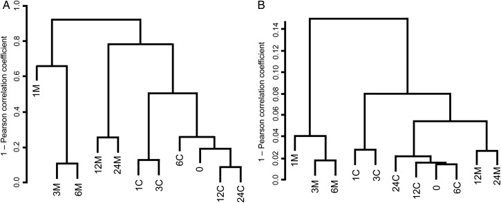 Hierarchical clustering analysis of taxonomic and functional compositions of 11 soil metagenomic samples. Clustering of (A) taxonomic compositions of 97% OTUs of 16S rRNA gene amplicons, and (B) functional compositions of genes for KEGG KO-assigned proteins was performed by comparison of the Euclidean distances. See the text for details.