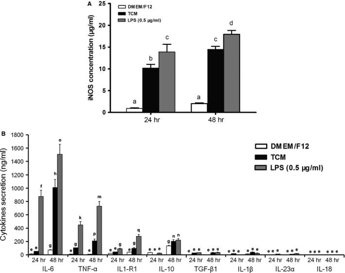 Quantitative analysis of nine cytokines/enzymes secreted by pMAC s after exposure to TCM , DMEM /F12 or LPS (0.5 μg/ml) for 24 or 48 hrs. The mean and SD were calculated from nine values from three independent experiments. The bars that do not share a letter represent data that are significantly different ( P