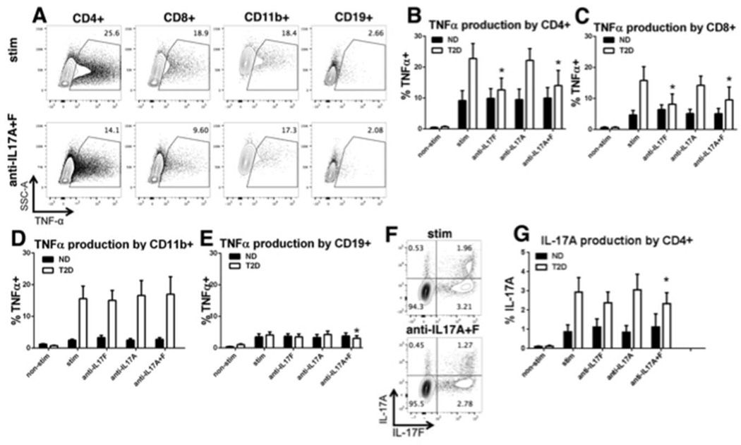 """IL-17 blockade decreases T cell TNFα production in T2DM (A) Percent intracellular TNFα-positive cells with surface marker expression as indicated in the absence (top panels) or presence (bottom panels) of IL-17 blocking antibody, following stimulation of PBMCs with αCD3/αCD28 (stim). Average percentage and SE of (B) CD4 + T cells (C) CD8 + T cells (D) CD11b + myeloid cells or (E) CD19 + B cells that stain for TNFα in the presence of stim +/− blocking antibodies as indicated. (F) Representative and (G) average (+/−SE) percentage of IL-17A and IL-17F staining in CD4 + T cells from panel B. """"Non-stim"""" indicates PBMCs cultured in the absence of stimuli. """"*"""" indicates significant differences ( p"""