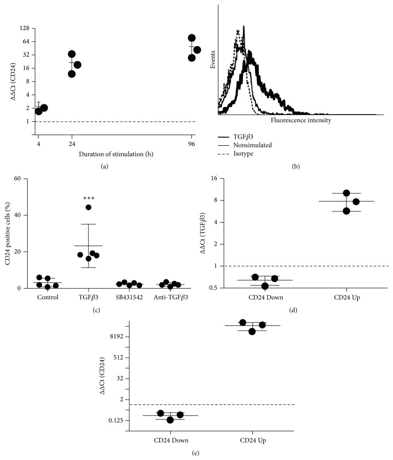 Reciprocal regulation of CD24 and TGF β 3. (a) qRT-PCR analysis of CD24 mRNA expression after stimulation with 10 ng/mL TGF β 3 for 4 h, 24 h, and 96 h relative to unstimulated control cells (ΔΔCt). (b) Exemplary histogram showing induction of CD24 surface expression after treatment with 10 ng/mL TGF β 3 or with 2.5 ng/mL TGF β 1 for 7 days as analyzed by flow cytometry. (c) Flow cytometric analysis of CD24 surface protein expression on hBMSCs after 7 days in unstimulated control cells (Control), in cells treated with 10 ng/mL TGF β 3 (TGF β 3), in cells treated with 10 ng/mL TGF β 3 + 20 μ M SB431542 (SB431542), or in cells treated with 10 ng/mL TGF β 3 and 4 μ g/mL anti-TGF β 3 antibody (anti-TGF β 3). (d) and (e) qRT-PCR analysis of TGF β 3 (d) and CD24 (e) mRNA expression after knockdown (CD24 Down) or overexpression (CD24 Up) of CD24 in hBMSCs after 7 days relative to respective control hBMSCs ( n = 3 independent experiments with hBMSCs from different donors).