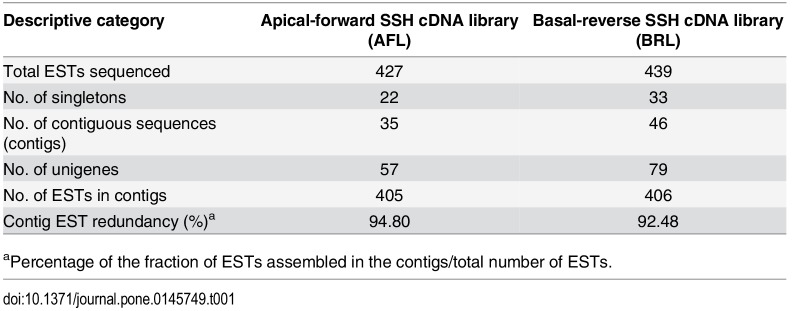 RT-PCR of total RNA isolated from superior (A) and inferior (B) spikelets of O. sativa cv. Mahalaxmi panicles on 0, 3 and 6 days after anthesis (DAA or simply D) for analysis of genes overexpressed in the superior compared with inferior spikelets (I) and genes overexpressed in the inferior compared with superior spikelets (II). Total RNA was isolated using TRIzol (Life Technologies) and reverse-transcribed using QuantiTect Reverse Transcription Kit (Qiagen). Each gene was amplified using gene-specific primers designed using Primer Blast. Actin and 18S rRNA were amplified for 30 and 25 cycles, respectively, as positive and loading controls. The other reactions were performed for 30 cycles, and the amplified products were separated on an agarose gel containing ETBR and visualized and photographed using a Gel Doc (Bio-Rad). The primer sequences are provided in S2 Table .