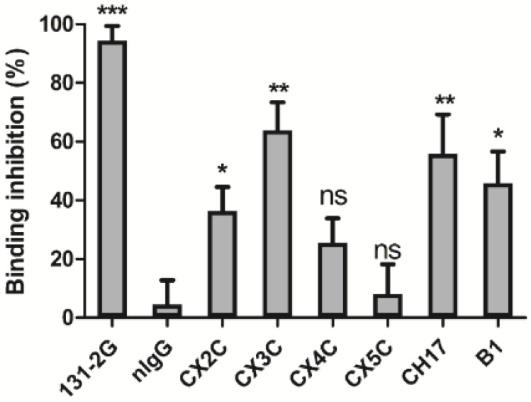 RSV G protein CX3C-CX3CR1 blocking antibody studies. Total IgG was purified from serum derived from mice vaccinated with CX3C peptides and evaluated for the ability to prevent native RSV G protein binding to CX3CR1 expressed on HEK293-CX3CR1 cells. Data are presented as the percent inhibition of RSV G protein binding to HEK293-CX3CR1 cells. Ns, non-significant; * p