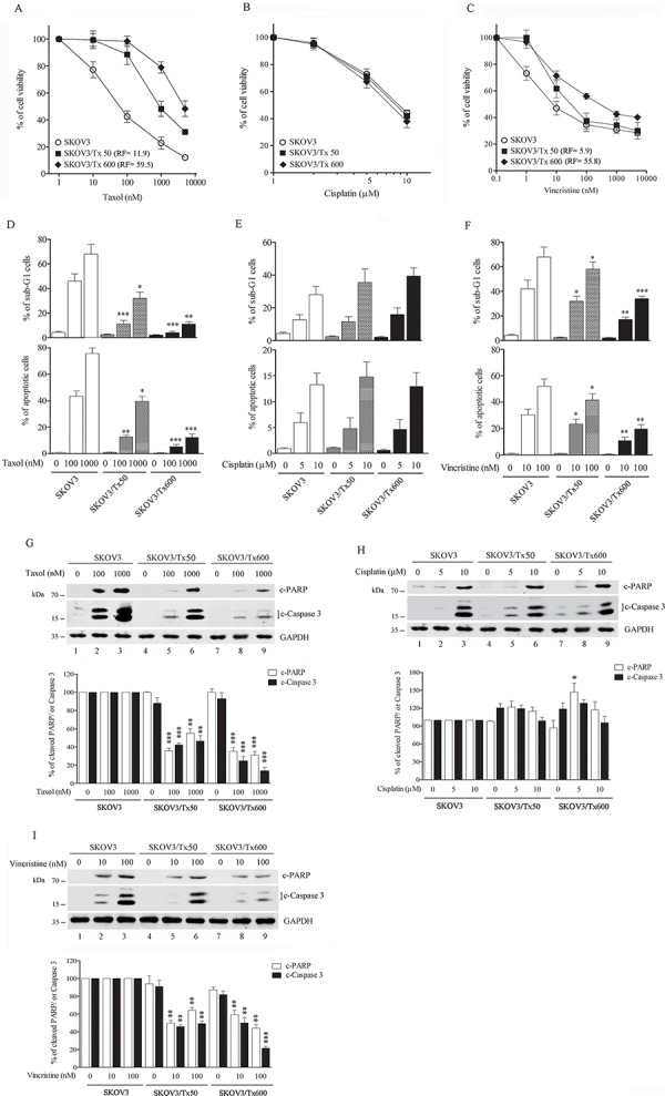 Establishment of txr cells A–C. Cell viability in response to taxol, cisplatin, and vincristine. D–F. Apoptotic sub-G1 cells in response to chemotherapeutic drugs. G–I. Caspase activation in response to taxol, cisplatin, and vincristine. The experiments were performed in triplicate (* p