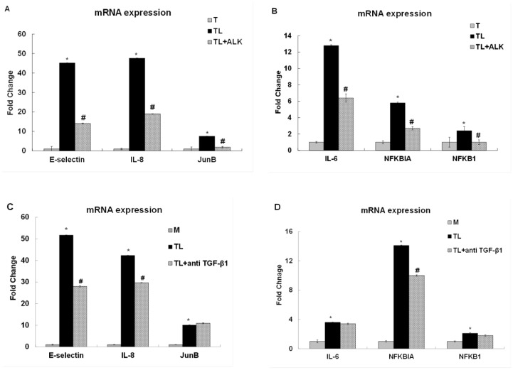 TGF-β receptor inhibitor or anti-TGF-β1 suppressed TGRL lipolysis products-induced pro-inflammatory gene expression. Treatment with lipolysis products increased pro-inflammatory gene expression at 3 h. Effect of 10 μM of inhibitor ALK (TL+ALK): A) mRNA expression of E-selectin, IL-8 and JunB expression was significantly suppressed by TGF-β receptor inhibitor. N = 3, P ≤0.05. * = TL compare to T, # = TL+ALK compared to TL. B) mRNA expression of IL-6, NFKBIA/IκBA and NFKB1/NFκB (p50)expression was also significantly suppressed by inhibitor. N = 3, P ≤0.05. * = TL compare to T, # = TL+ALK compared to TL. Effect of 4 μg/mL of anti TGF-β1 antibody: C) mRNA expression of E-selectin and IL-8 expression was significantly suppressed by anti TGF-β1 but not JunB. N = 3, P ≤0.05. * = TL compare to M, # = TL + anti TGF-β1 compared to TL.