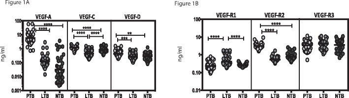 Elevated systemic levels of circulating angiogenic factors in PTB individuals. The plasma levels of (A) vascular endothelial growth factors (VEGF-A, C and D) and (B) VEGF-receptors (VEGF-R1, R2 and R3) were measured in PTB (n = 44), LTB (n = 44) and NTB (n = 44) individuals. The data are represented as scatter plots with each circle representing a single individual. P values were calculated using the Kruskal-Wallis test with Dunn's post hoc comparison.