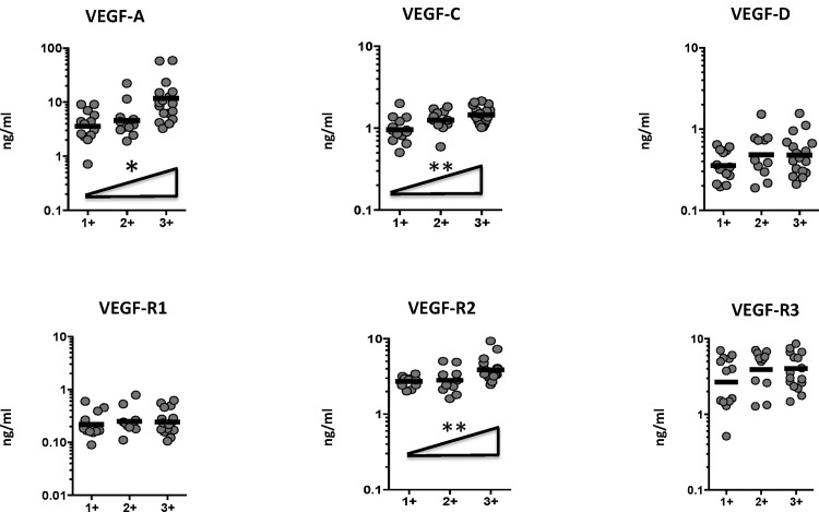 Positive relationship between systemic levels of angiogenic factors and smear grades in PTB individuals. The relationship between the plasma levels of VEGF-A, C, D, VEGF-R1, R2, R3 and smear grades as estimated by sputum smears was examined in all PTB individuals. The data are represented as scatter plots with each circle representing a single individual. P values were calculated using Linear trend post-test.