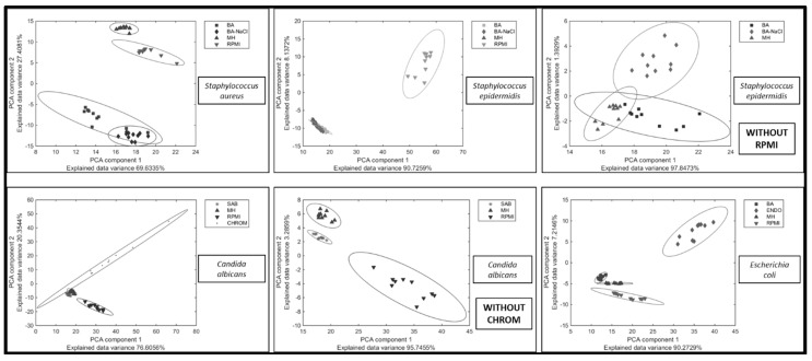 """Repeatability of Raman spectra of the given organism after growth on different culture media (ENDO—Endo agar, BA—blood agar; BA-NaCl—blood agar with 10% NaCl; <t>MH—Mueller-Hinton</t> agar; CHROM—CHROMagar Candida; RPMI—Roosvelt-Park Institute Medium 1640). Plots marked """"Without RPMI"""" and """"Without CHROM"""" are displayed to simplify the comparison of variability of Raman spectra measurement on all of the media. The lower the variability within the species is, the smaller the area covered by an ellipsoid."""