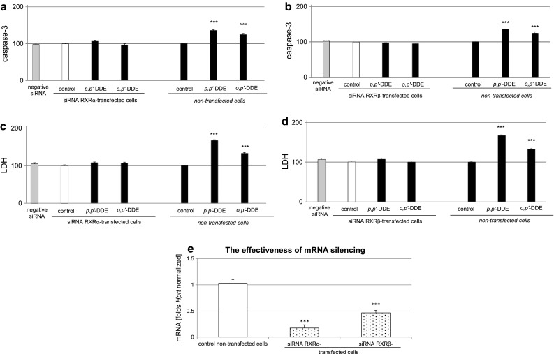 Effect of p,p ′-DDE and o,p ′-DDE (both at 10 μM) on caspase-3 activity ( a , b ) and LDH release ( c , d ) in RXRα or RXRβ siRNA-transfected hippocampal cells. The effectiveness of mRNA silencing was verified using qPCR ( e ). Primary hippocampal cultures were transfected with 50 nM RXRα or RXRβ siRNAs in INTERFERin™-containing medium without antibiotics for 6 h. The results were normalized to the absorbance in vehicle-treated cells and expressed as a percentage of the control, either in siRNA-transfected or non-transfected cells ( a – d ). mRNA silencing was presented as a fold of the control non-transfected cells ( e ). Each bar represents the mean ± SEM of three to four independent experiments. The number of replicates in each experiment ranged from 5 to 8. *** p