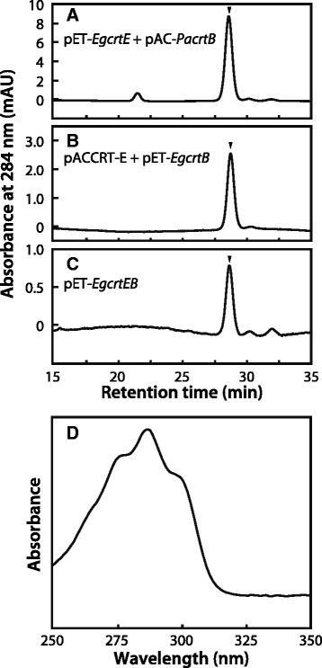 Analysis of phytoene production in E. coli by HPLC. HPLC chromatogram (284 nm) of extracts from E. coli carrying a pET- EgcrtE with pAC- PacrtB , b pACCRT-E [ 23 ] with pET- EgcrtB and c pET- EgcrtEB . d Absorbance spectrum of phytoene detected at a retention time of 28.6 min. Phytoene was extracted from E. coli transformants and analyzed with HPLC in accordance with the method of Takaichi [ 57 ]. The arrowheads in the chromatograms indicate the position of phytoene elution. Data are representative of three or four experiments with similar results