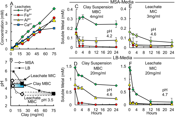 Clay suspensions provide extended metal release whereas aqueous leachates alone precipitate metals. ( A ) Major element concentrations leached from the Blue clays. ( B ) pH, MIC and MBC values for leachates (gray bars) and clay suspensions (blue bar) measured in MSA and LB media. The leachate pH is similar at MBC in both media, while clay suspensions kill bacteria at higher pH. A comparison of soluble metal concentrations ( C,D ) show clay suspensions kill bacteria by maintaining metal solubility over 24 h, while ( E,F ) leachates precipitate metals, only inhibiting growth.