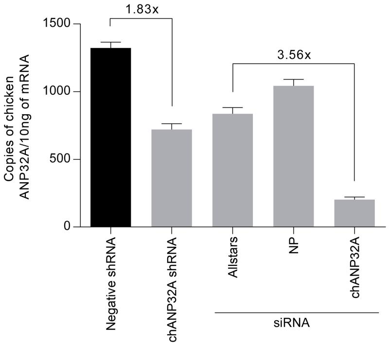 Quantification of knockdown of chANP32A in chicken cells <t>DF-1</t> cells were transduced with VSV-G lentiviral vectors that delivered a transgene expressing shRNA directed against chANP32A or a negative sequence and the puromycin gene. Puromycin selected cells were transfected with siRNA (100nM) (underlined). RNA was extracted from untreated shRNA cells and siRNA-treated shRNA cells. Knockdown of chANP32A was quantified by qRT-PCR of the extracted RNA, calculated using a standard curve generated with chANP32A cDNA, using primers specific for chANP32A. Fold decrease of RNA copies is displayed as compared to Negative shRNA DF-1 or ALLstars treated chANP32A shRNA DF-1 cells. (Error displayed as SEM; n=3 biological replicates). This analysis accompanies experiments in Figure 3a-c .