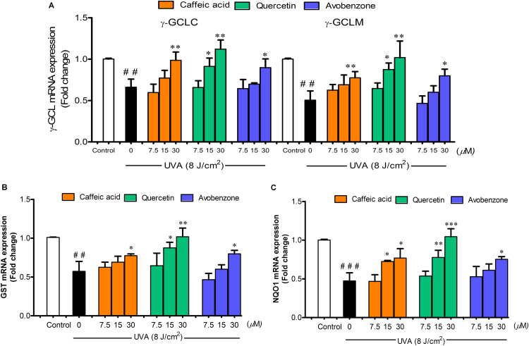 The protective effects of CA, QU and AV on UVA-mediated downregulation of Nrf2 target genes. (A) γ-GCL <t>(γ-GCLC</t> and γ-GCLM), (B) <t>GST</t> and (C) NQO1 mRNA expressions were assessed by real-time RT-PCR analysis at 2 h after UVA irradiation in B16F10 cells pretreated with test compounds. The statistical significance of differences between the control and irradiated cells was evaluated by Student's t test and between UVA-irradiated and compounds-treated cells by one-way analysis of variance (ANOVA) with Dunnett's multiple comparison test. ## P