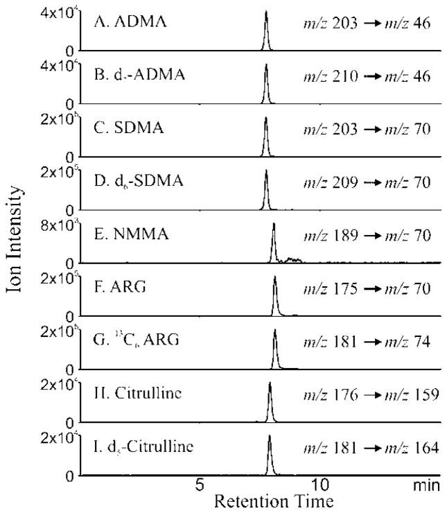 Detection of arginine metabolites by LC/MS Extracted ion chromatograms of ADMA (A), D 7 ADMA(B), SDMA (C), D 6 SDMA (D), NMMA (E), arginine (F), 13 C 6 - arginine (G), citrulline (H) and 13 C 5 citrulline (I) are shown. <t>Hydrophilic</t> interaction chromatography (HILIC) of authentic compounds and their internal standards was performed using <t>Phenomenex</t> HILIC column with solvent 10mM ammonium acetate and 100% acetonitrile with 0.1% formic acid. The column was equilibrated with 95% solvent B and 5% solvent A initially. The gradient was: 95–15% solvent B over 8 min, 15% solvent B for 6 min, 15–95% solvent B for 1 min and then finally 95% solvent B for 10 min. The eluent was subjected electrospray ionization mass spectrometry (ESI/MS) and the analytes were detected in the multiple reaction monitoring mode (MRM). X axis is denotes time of elution during chromatographic run and the Y axis represents the ion intensity of the extracted ion chromatogram of the daughter ion following ESI of the analyte in the MRM mode. The MRM transitions that are followed for the individual analyte are depicted with each parent molecular ion to daughter fragment that was monitored.