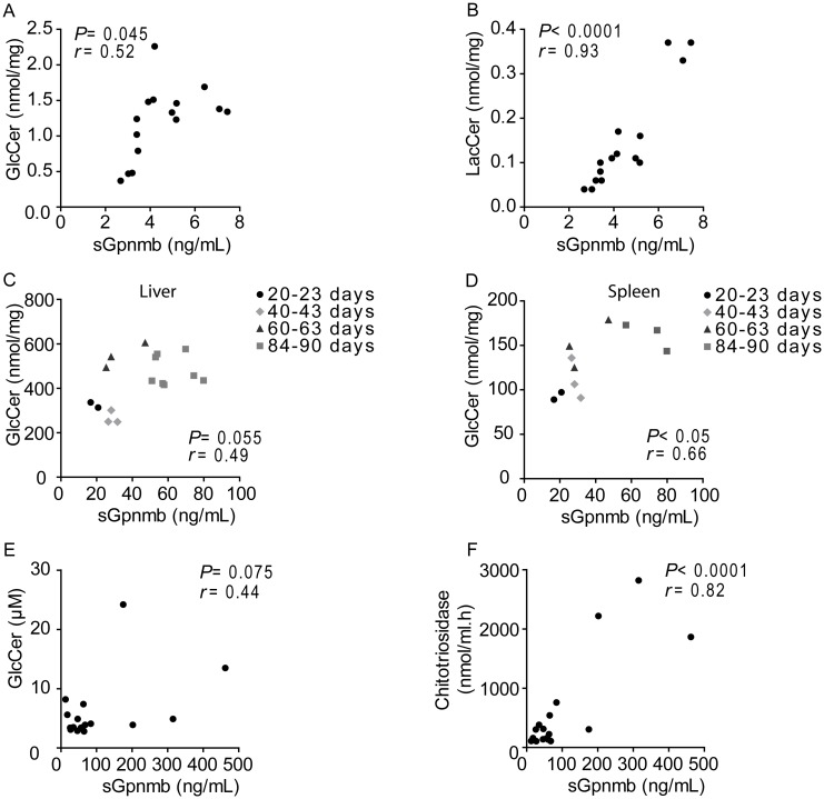 Correlation between glycosphingolipids and sGpnmb levels. Correlation between cell lysate (A) glucosylceramide (GlcCer) or (B) lactosylceramide (LacCer) and sGpnmb from the medium of RAW264.7 cells exposed to 1.25, 2.5, 5 and 10 μM of U18666A for 20 h. Correlation between tissue lysate (C) hepatic or (D) splenic GlcCer levels and plasma sGpnmb of Npc1 nih/nih mice at the age of 20–23, 40–43, 60–63 and 84–90 days. Correlation between plasma (E) GlcCer or (F) chitotriosidase activity and sGpnmb levels from diagnosed NPC patients ( n = 17). Pearson correlational analysis was used to evaluate correlation.