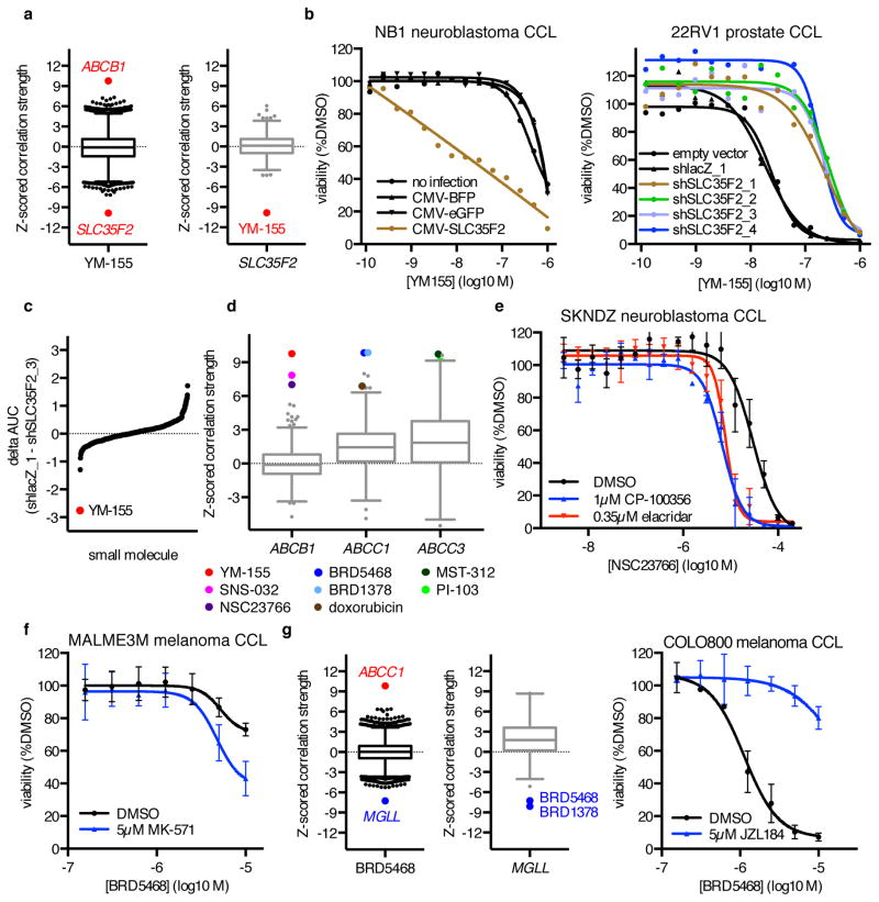 MoA Analysis Reveals Small-Molecule Transport Mechanisms ( a ) Expression–sensitivity correlations for YM-155 and SLC35F2 . ( b ) Effects of SLC35F2 <t>overexpression</t> in NB1 cells, or of SLC35F2 knockdown in 22RV1 cells, on YM-155 cytotoxicity. Each point represents the mean of n = 2 independent experiments with 3 (22RV1) –4 (NB1) technical replicates each. ( c ) Difference in 8-point AUC values between 22RV1-shlacZ_1 and 22RV1-shSLC35F2_3 cells for 439 small molecules tested in duplicate. ( d ) Expression–sensitivity correlations for multidrug resistance genes implicated by MoA analysis. ( e ) Effects of co-treatment with DMSO, the ABCB1 inhibitor CP-100356, or the ABCB1 inhibitor elacridar on NSC23766 cytotoxicity in SKNDZ cells. ( f ) Effects of co-treatment with DMSO or the ABCC1 inhibitor MK-571 on BRD5468 cytotoxicity in MALME3M cells. ( g ) Expression–sensitivity correlations for BRD5468 and MGLL , and effects of co-treatment with DMSO or the MGLL inhibitor JZL184 on BRD5468 cytotoxicity in COLO800 cells. For ( e – g ), each point is mean ± s.d. for n = 3 independent experiments.