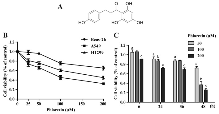 Cytotoxic effect of Ph on Beas-2b, A549 and H1299 cells. (A) Structure of Ph. (B) Viability analysis of Beas-2b, A549 and H1299 cells incubated in the indicated concentrations of Ph for 48 h, as assayed by MTT as described in the Materials and methods. (C) Viability of A549 cells incubated in 50, 100 and 200 µ M of concentrations of Ph for 6, 24, 36 and 48 h. Each bar represents the mean ± SD, n=3. Bars with different letters are significantly different at P