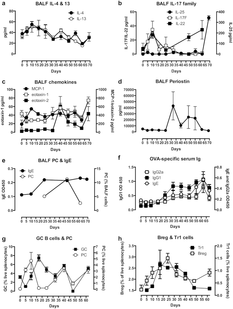 Inflammatory parameters of the C57BL/6 mouse model of chronic asthma. ( a ) IL-4 and IL-13 in the BALF are presented as mean ± SEM values of the mean levels with respect to individual mice (n = 5) at each time point; ( b ) IL-17E (IL-25; n = 5), IL-17F (n = 5) and IL-22 (n = 3) in the BALF are presented as mean ± SEM values of the mean levels in the indicated numbers of individual mice at each time point; ( c ) MCP-1 (n = 5), exotaxin-1 (n = 5–8) and eotaxin-2 (n = 5–8) in the BALF are presented as mean ± SEM values of the mean levels in the indicated numbers of individual mice at each time point; ( d ) Periostin in the BALF is presented as mean ± SEM values of the mean levels in individual mice (n = 3–5) at each time point; ( e ) OVA-specific IgE in the BALF is presented as mean ± SEM values of the mean OD450 values for individual mice (n = 3–4) at each time point whilst the levels of plasma cells (PC) in pooled samples at each time point are presented as the % of live BALF cells; ( f ) OVA-specific IgE, IgG1 and IgG2a levels in serum are presented as mean ± SEM values of the mean OD450 values for individual mice (n = 5) at each time point; levels of splenic germinal centre (GC) B cells and PC ( g ) and IL-10 + Breg and Tr1 cells ( h ) presented as mean % ± SEM values of individual mice (n = 5) at each time point.